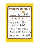 Masking Tape Today's Specials - MARK'S