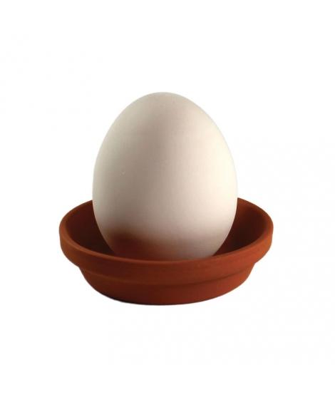 Plante à Cultiver Eggling Basilic - SEISHIN