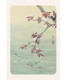 Carte Postale Cerisier 10x15cm - Editions Jourdenuit